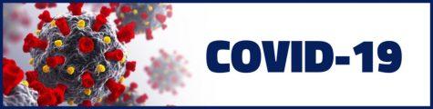 COVID-19 Global Report For November