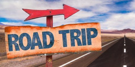 Tips to Survive a Road Trip